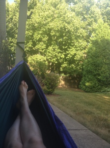 View from hammock.